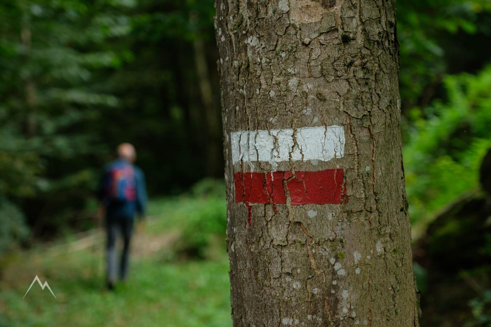 Numerose tracce bianche/rosse guidano lungo il percorso